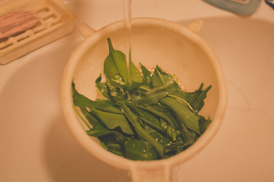 Cleaning wild garlic leaves