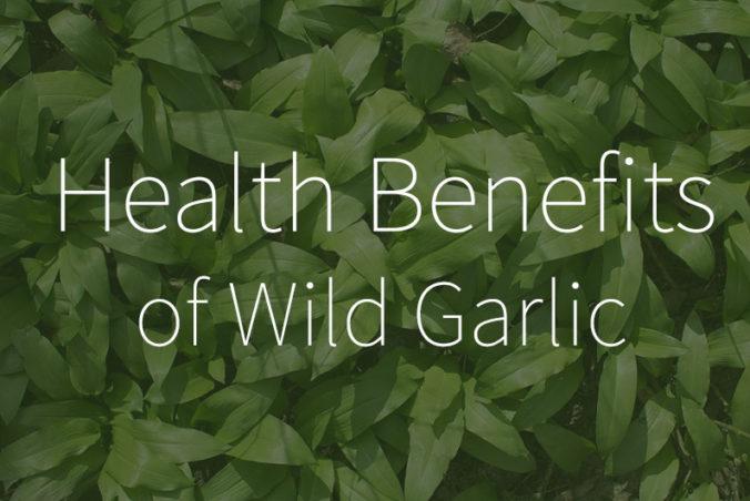 Health Benefits of Wild Garlic